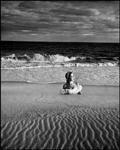 Ballet on the Beach (d)