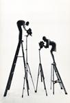 xmas ladder 1967